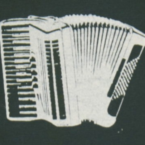 white accordion on green canvas patch